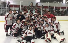 Lakeland Hockey: County Champs and Record Makers