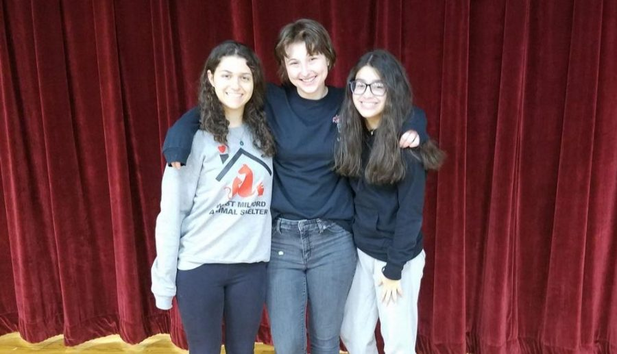 The top three scorers of Lakelands 8th annual Poetry Out Loud competition.  From left to right: Nicole Kreider, Kathleen Darling, Kristie Andino.