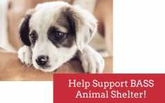 Lakeland Fundraisers for Local Shelter