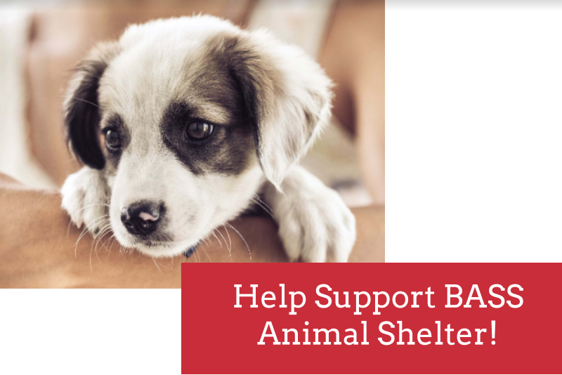 The Student Council is working to help the LRHS community give back with a fundraiser for the volunteer run BASS Animal Shelter.